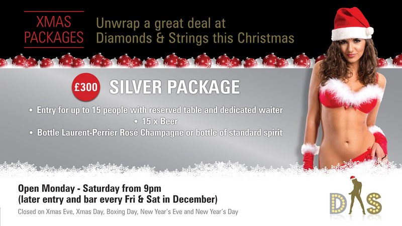 Diamonds and Strings Christmas Package - Bronze